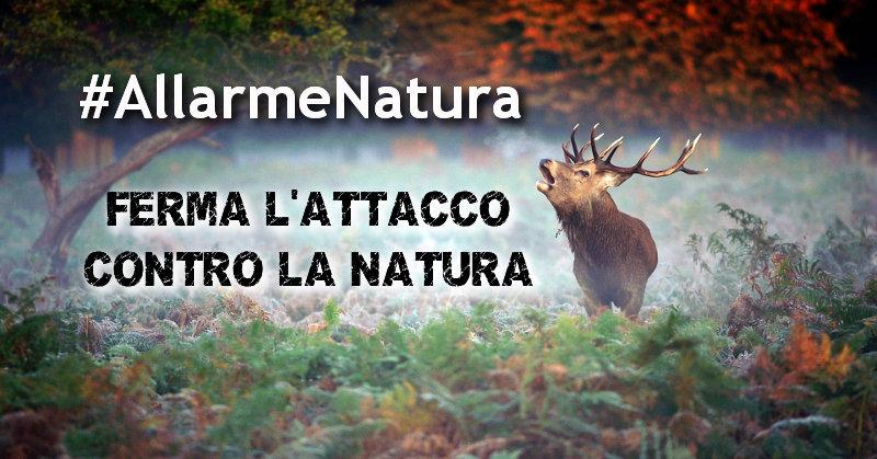 Risultati immagini per Allarme natura