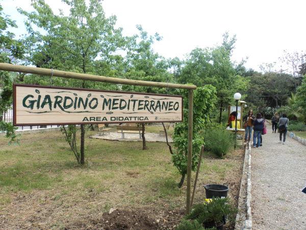 Il circolo legambiente di andria thomas sankara presenta - Progetto giardino mediterraneo ...